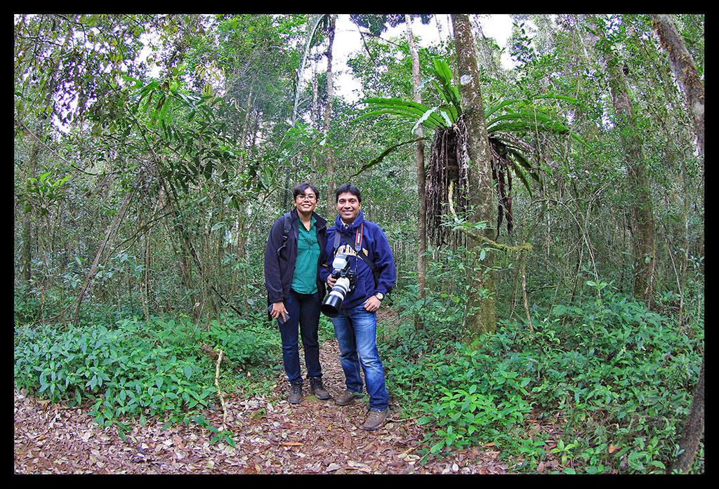 In the Andasibe forest