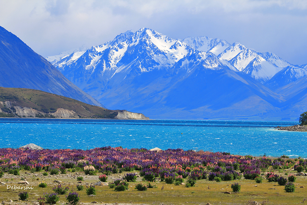 Southern Alps in the backdrop for Lake Tekapo