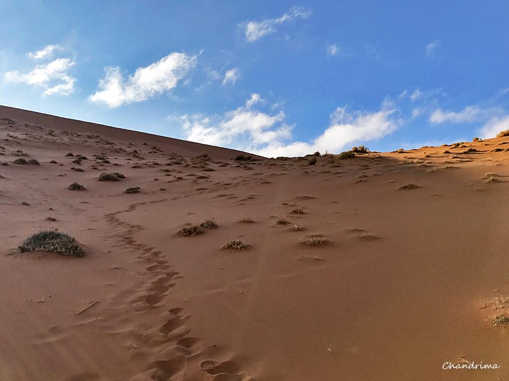Sossusvlei dune 45 descent
