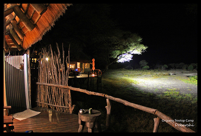 Onguma Treetop Camp The waterhole at night