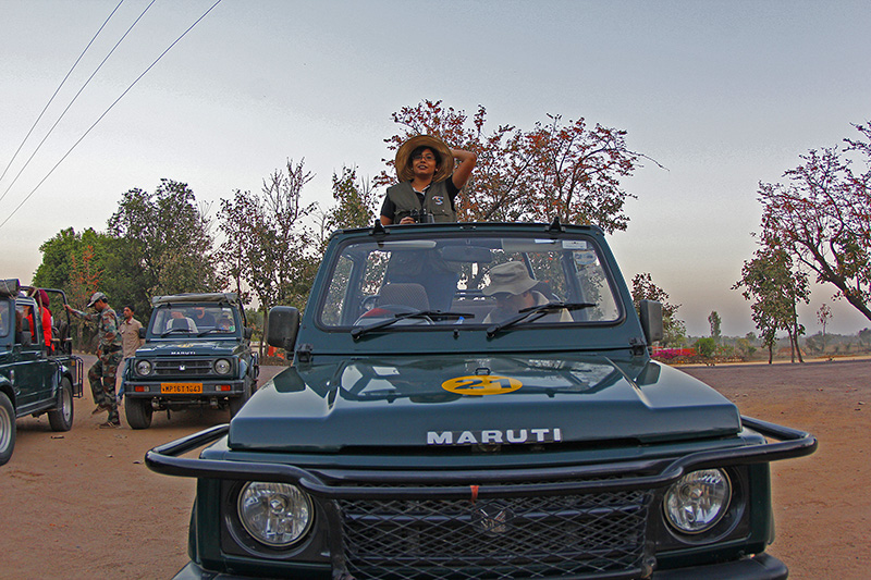 Safari Jeep in Madla Gate in Panna National Park