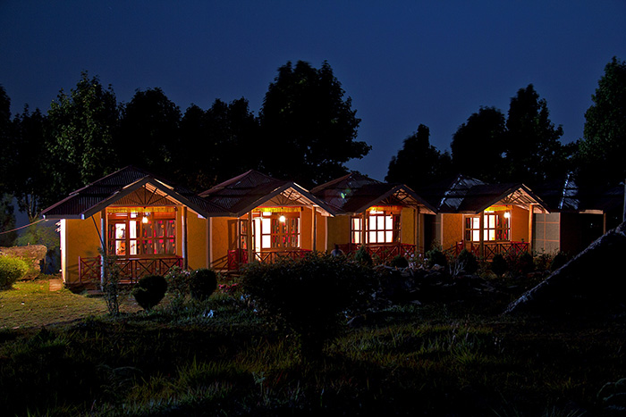 Road trips in India, blue pine retreat