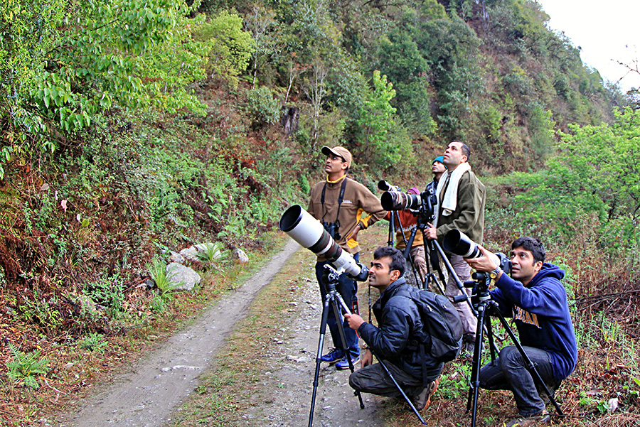 Looking for birds at Eaglenest Wildlife Sanctuary