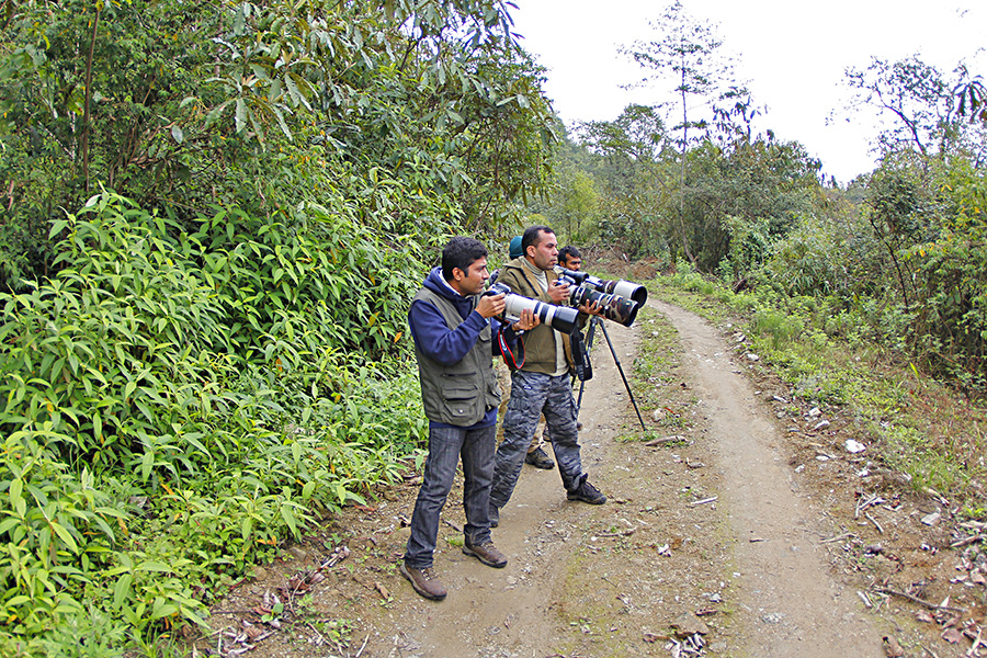 Birding at Eaglenest Wildlife Sanctuary