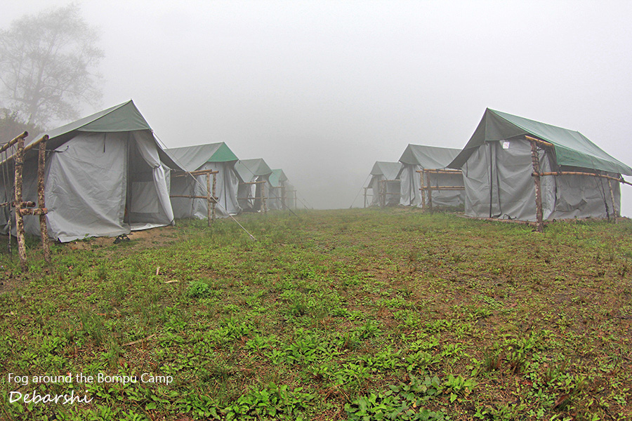 Bompu Camp Tents Eaglenest Wildlife Sanctuary