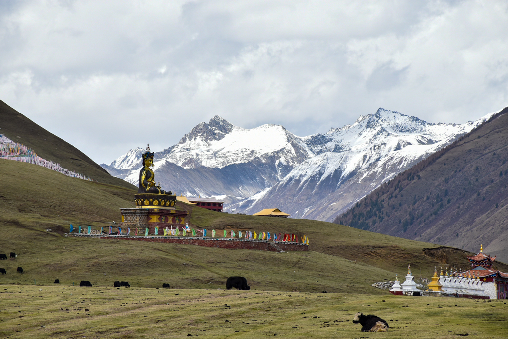 The Tagong grasslands with Buddha statue and jagged snow peaks