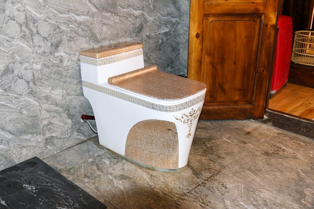 Golden toilet bowl at AKDB Boutique Hotel