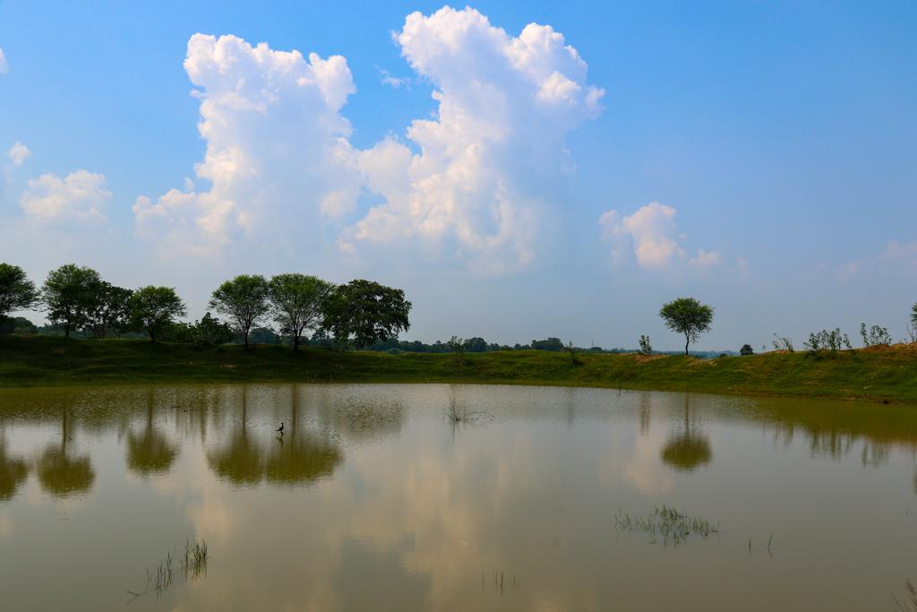 Rural Purulia Landscape