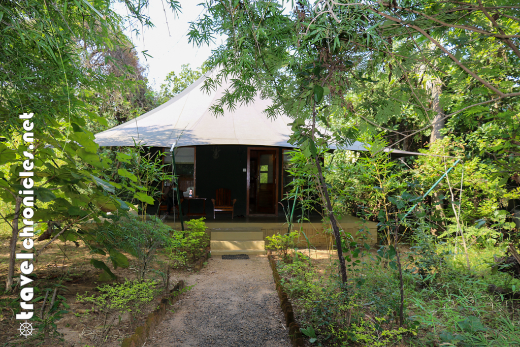 Luxury tent at Pench Jungle Camp