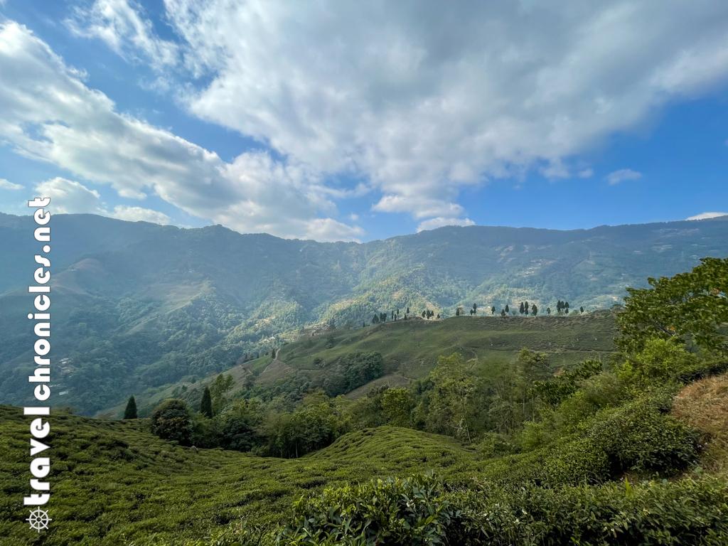 Chamong Landscape