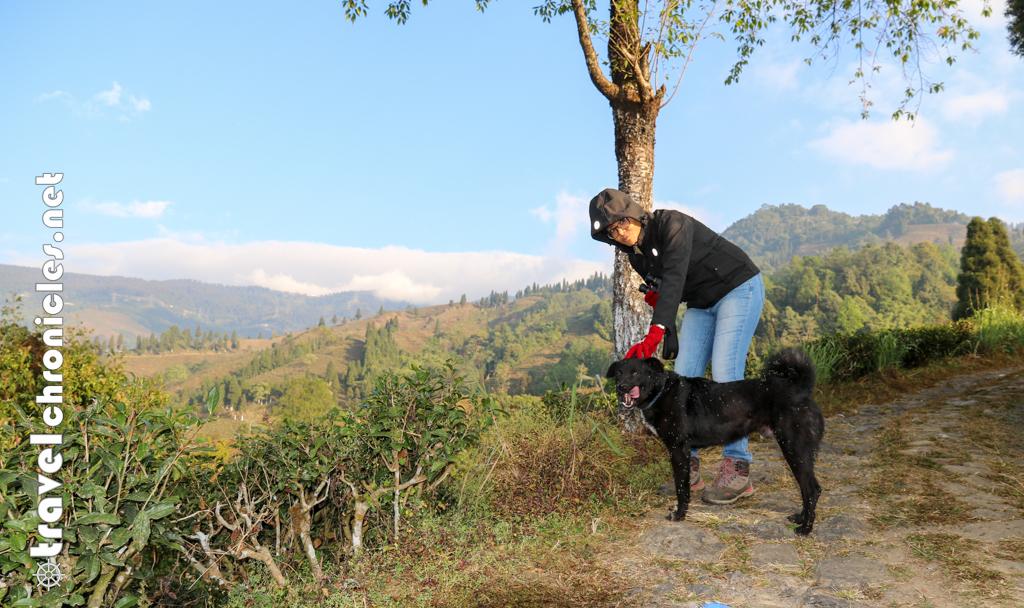 Furry friend during the trek