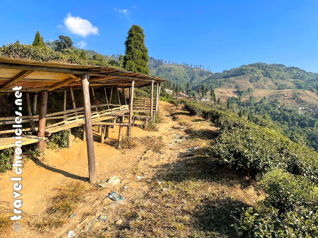 Tea workers rest area